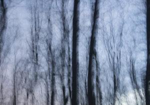 Елена Яневска- 01 photography 100_70cm