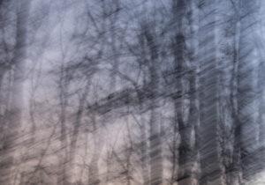 Елена Яневска- 05 photography 100_70cm