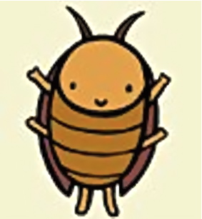 Нов вид хлебарка откриха в Студентски град!