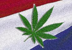 Краят на една епоха... в Холандия вече не продават трева